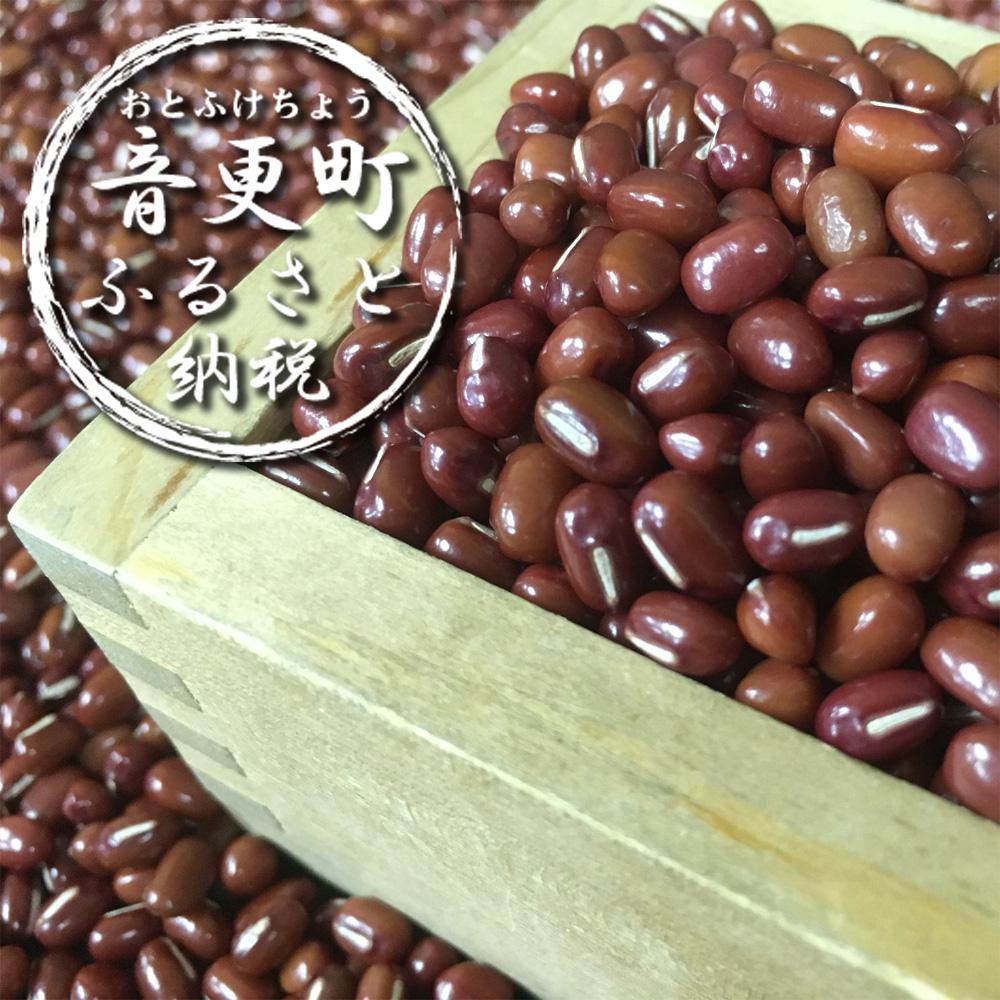【ふるさと納税】おとふけ産小豆14kg