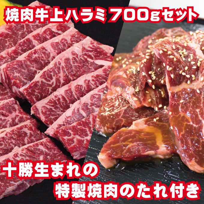 北海道幕別町 ふるさと納税 牛上ハラミ サガリ お得セット 700g タレ付き焼肉セット 入手困難 バーベキュー 牛肉 焼肉 お肉 お届け:2~3ヶ月お時間がかかる場合があります