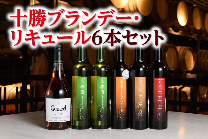 50年以上の歴史を誇る十勝ワインは、一貫して辛口路線を堅持しています。 【ふるさと納税】C001-6 十勝ブランデー・リキュール6本セット