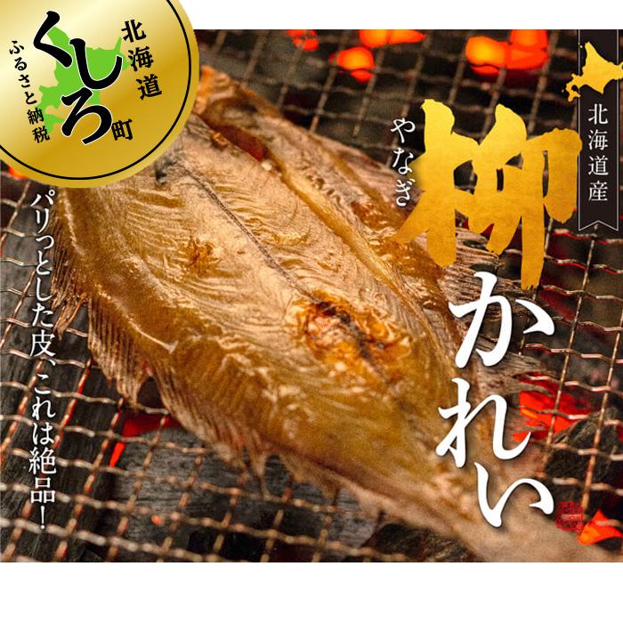 【ふるさと納税】北海道産 特大柳かれい一夜干し 1尾×3個セット