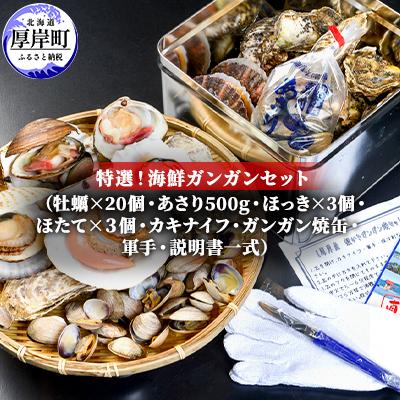 【ふるさと納税】特選!海鮮ガンガン焼セット 【カキ・魚貝類・帆立】