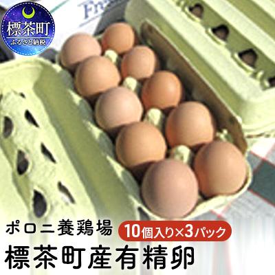 【ふるさと納税】ポロニ養鶏場 標茶町産有精卵10個×3パック 【卵】 お届け:2020年3月1日~7月31日まで