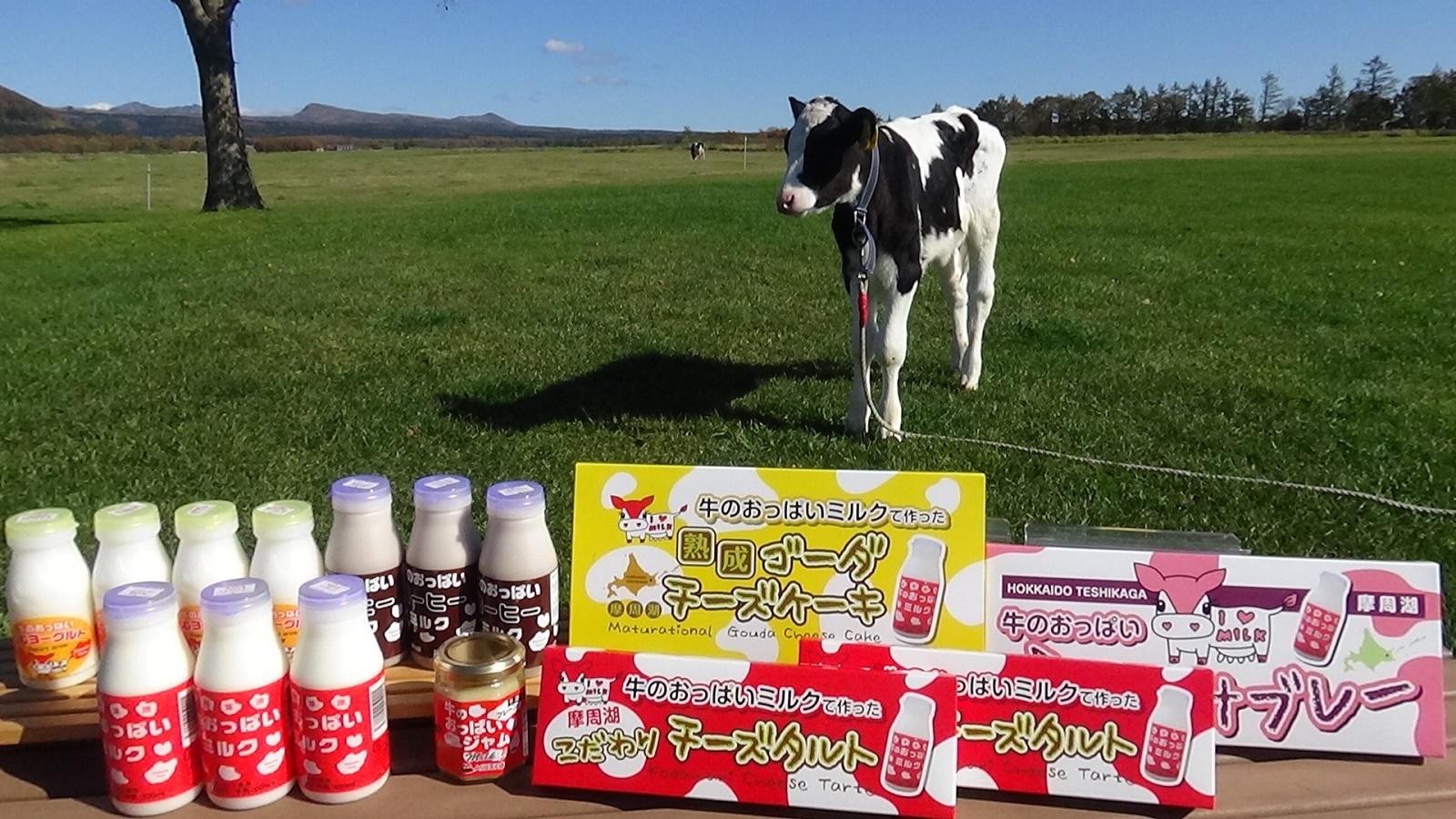 【ふるさと納税】77.牛のおっぱいミルクセット スペシャルセット3 (牛乳 コーヒー牛乳 飲むヨーグルト チーズタルト ミルクサブレ チーズケーキ ジャム) スイーツ お取り寄せ 20000円
