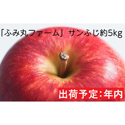 青森県弘前市 内祝い ふるさと納税 お気に入り 年内 ふみ丸ファーム 最高等級 特選 サンふじ約5kg 弘前市産 リンゴ 林檎 りんご 果物類 青森りんご お届け:2020年11月15日~2020年12月30日