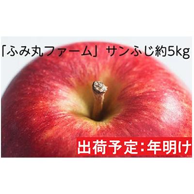 青森県弘前市 ふるさと納税 年明け 着後レビューで 送料無料 ふみ丸ファーム 最高等級 特選 サンふじ約5kg りんご お届け:2021年1月6日~2021年2月28日 果物類 トレンド 林檎 青森りんご 弘前市産 リンゴ