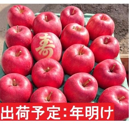 【ふるさと納税】年明け 【訳あり】家庭用 百年木の香 有機肥料100% サンふじ約5kg【寿】入り 【弘前市産·青森りんご】 【果物類·林檎·りんご·リンゴ·サンふじ·約5kg·訳あり】 お届け:2021年1月6日~2021年3月31日