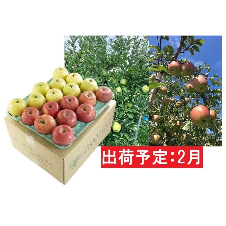 青森県弘前市 ふるさと納税 2月 供え 訳あり 葉とらずサンふじ 王林ミックス約10kg 弘前市産 青森りんご 果物類 リンゴ 超安い 王林 りんご サンふじ 林檎 お届け:2021年2月1日~2021年2月28日