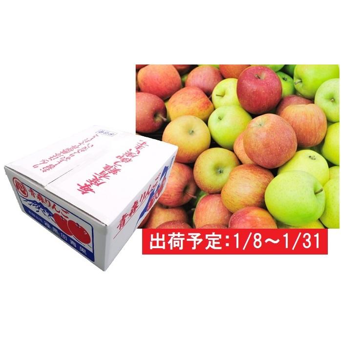【ふるさと納税】1月 家庭用 津軽のおまかせりんご約10kg1種(王林、ジョナゴールド等) 【果物・フルーツ・くだもの・林檎・リンゴ】 お届け:2020年1月8日~2020年1月31日