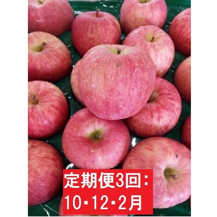 【ふるさと納税】【定期便3回10・12・2月】理由あり りんご2品種約16kg 【定期便・果物類・林檎・りんご・リンゴ】 お届け:2020年10月5日~2021年2月28日