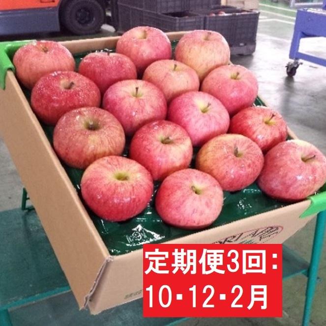 【ふるさと納税】【定期便3回10・12・2月】葉とらずりんご2品種約16kg 【定期便・果物類・林檎・りんご・リンゴ】 お届け:2020年10月5日~2021年2月28日