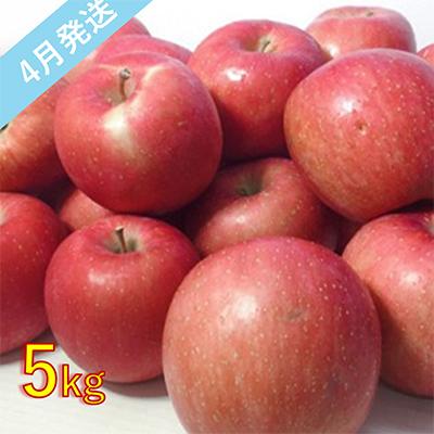 【ふるさと納税】4月 訳あり 有袋ふじ 約5kg 【青森りんご·CA貯蔵·クール便】 【果物類·林檎·りんご·リンゴ·約5kg·訳あり】 お届け:2021年4月1日~2021年4月28日