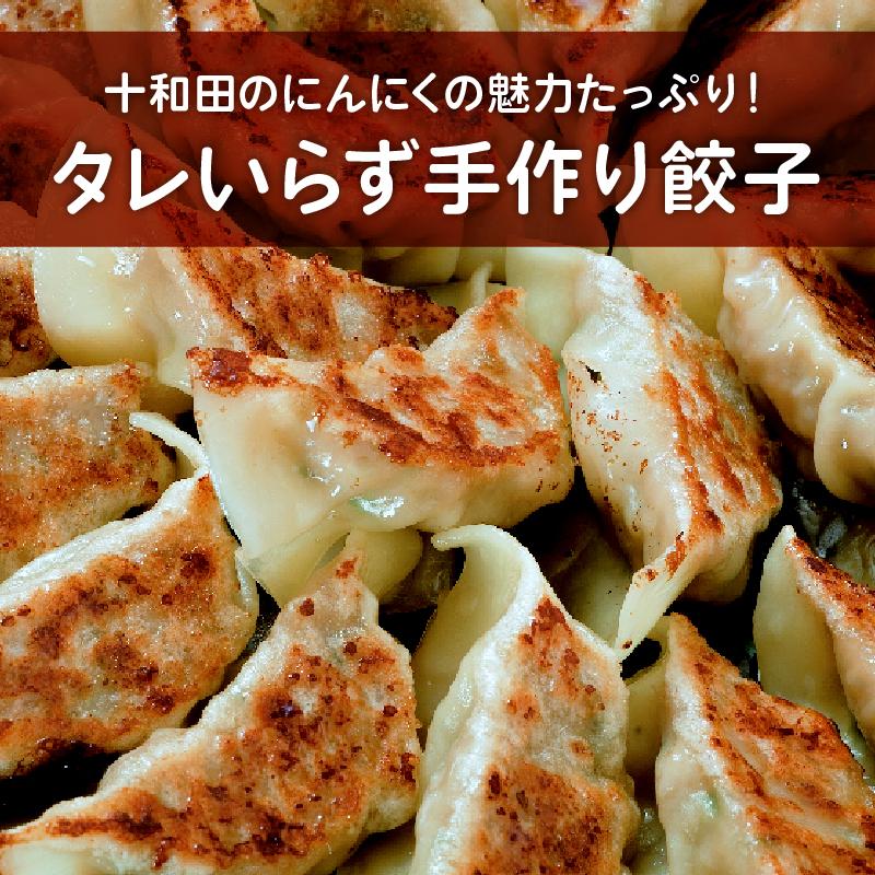 調理後タレ要らずで ジューシーな肉汁でそのまま食べられる手作り餃子です ふるさと納税 タレ無しで食べる十和田の手作り餃子 10個入り 販売 男女兼用 times;3 1パック 1033463