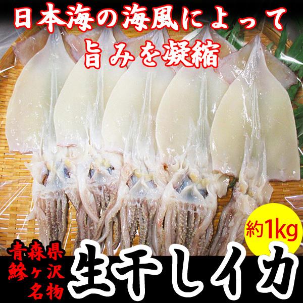 青森県鰺ヶ沢町 生干しイカ 5枚