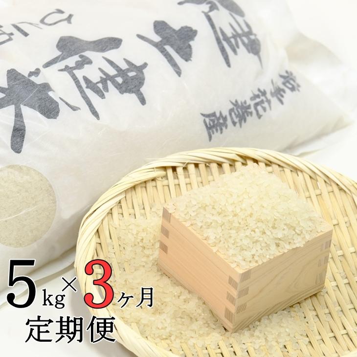 【ふるさと納税】《3ヶ月 定期便》岩手県 花巻産「健土健米」ひとめぼれ(5kg×3回)