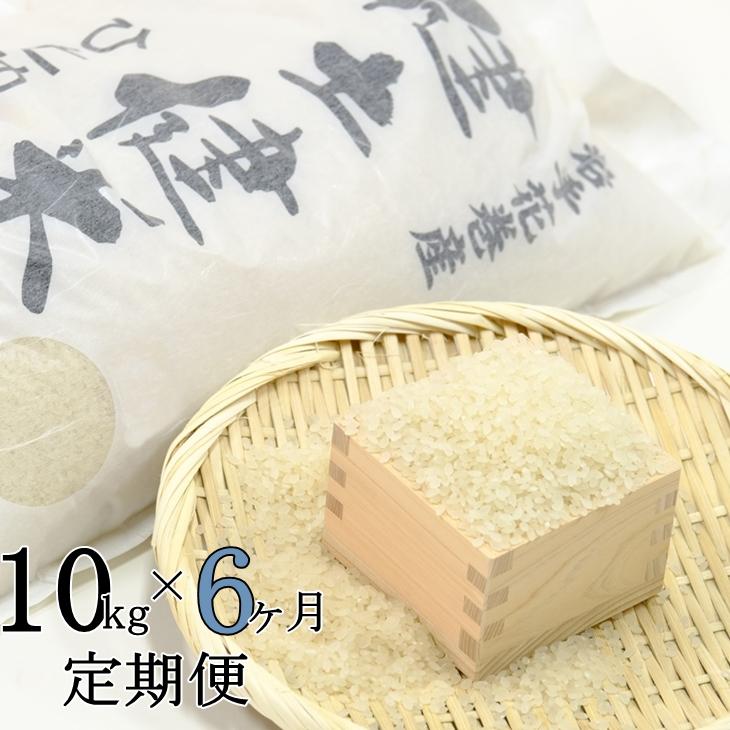 【ふるさと納税】《6ヶ月 定期便》岩手県 花巻産「健土健米」ひとめぼれ(10kg×6回)