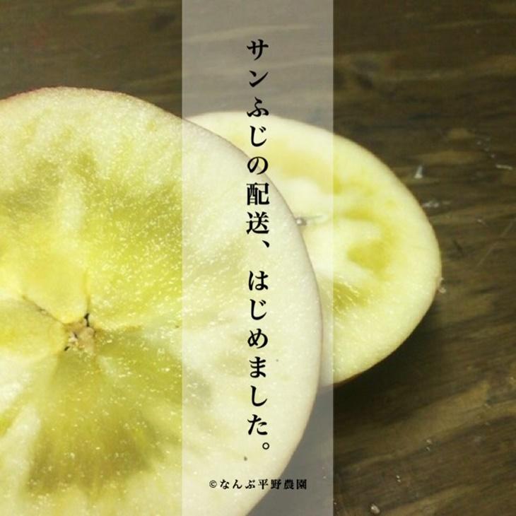 【ふるさと納税】りんごの王様 サンふじ 蜜入り 5kg (14~20玉)訳あり 家庭用