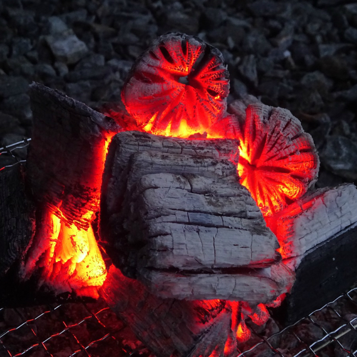 【ふるさと納税】【火つき・火力・火持ちよしの国産高級木炭】岩手切炭(GI)3kg×8個 なら堅一級