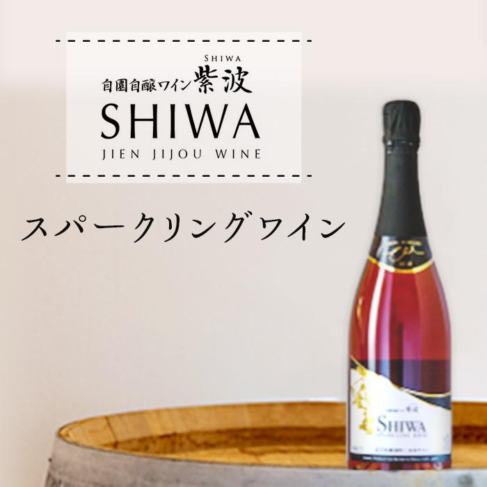 【ふるさと納税】1014スパークリングワイン【自園自醸ワイン紫波】