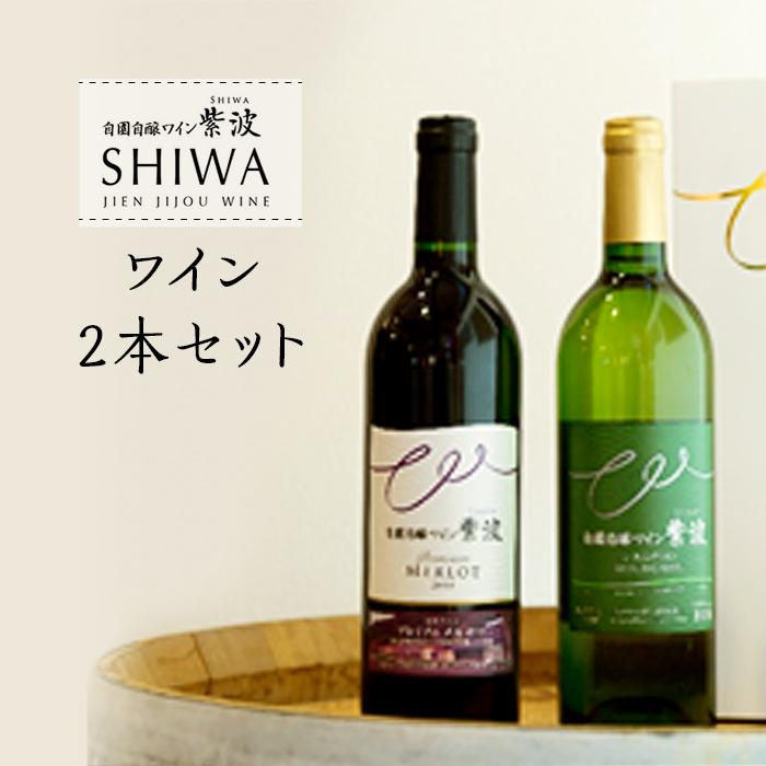 【ふるさと納税】1016ワイン2本セット【自園自醸ワイン紫波】