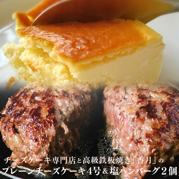 【ふるさと納税】チーズケーキハウスのプレーンチーズケーキ4号&塩ハンバーグ2個セット