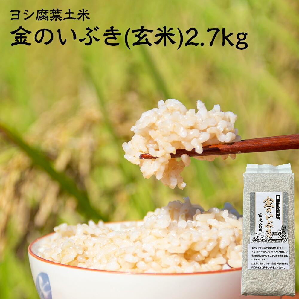 真空パックで鮮度長持ち 玄米食用品種 チープ 本店 金のいぶき ふるさと納税 新米 ヨシ腐葉土米 玄米 令和3年産 2.7kg