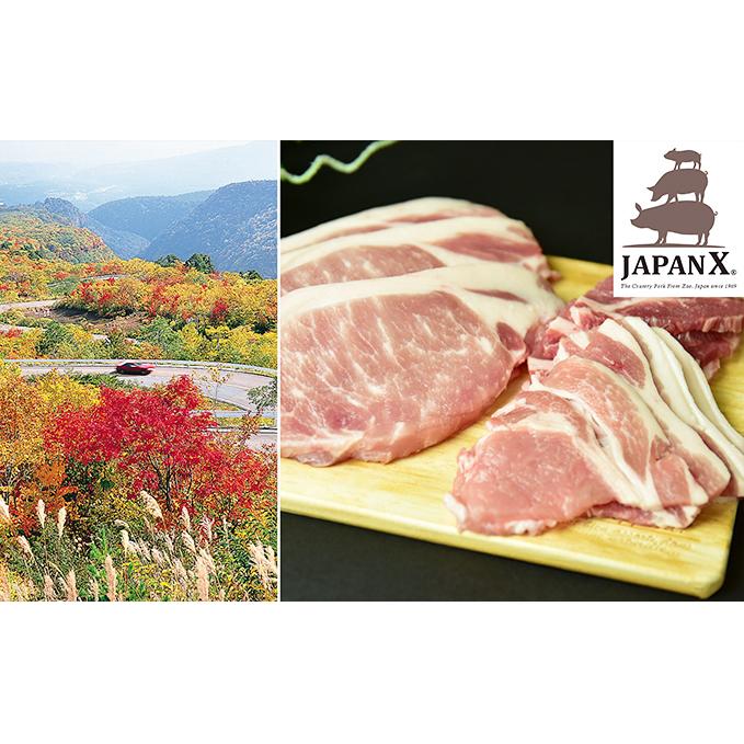 日本限定 宮城県蔵王町 ふるさと納税 牧場直送JAPAN X 売買 豚肉 グリルセットA お肉 計6kg