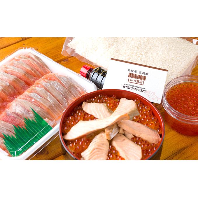 宮城県亘理町 ふるさと納税 期間限定 おしか商店 はらこ飯のもと 約4~5人前 魚貝類 鮭 サーモン 大放出セール お米