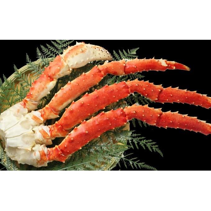 宮城県亘理町 ふるさと納税 カニ たらばがに 期間限定 初売り 脚 DXサイズ かに 蟹 魚貝類 加工食品 1.3kg マルヤ水産