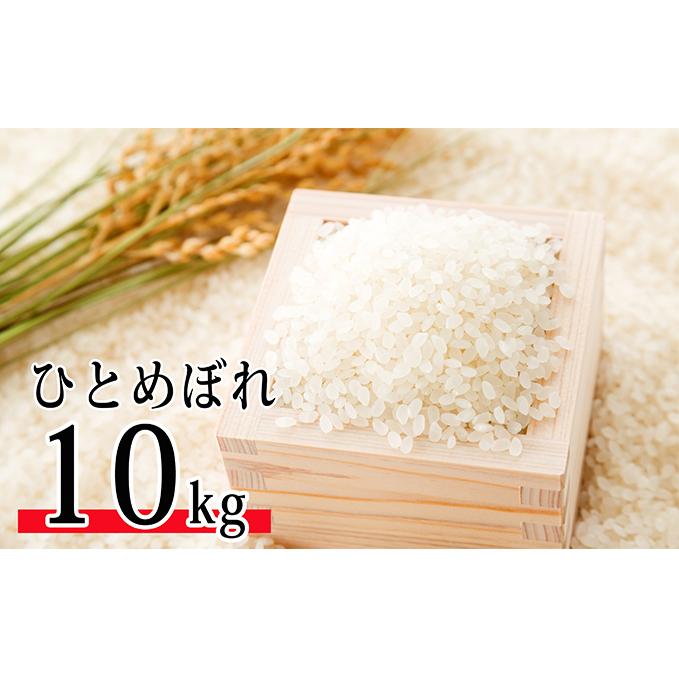 【ふるさと納税】令和元年産 郷の有機使用特別栽培米 ひとめぼれ 10kg 【お米・ひとめぼれ】