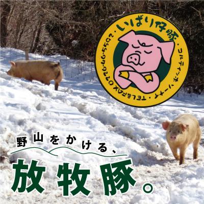宮城県南三陸町 ふるさと納税 シェフもおすすめ 日本で一番おいしい豚肉 贈物 いばり仔豚 4種の部位 ロース バラ もも 豚肉 カタ カタスライス各250g ポーク お肉 フレッシュ豚肉1kgコース 詰め合わせ 入手困難 モモ