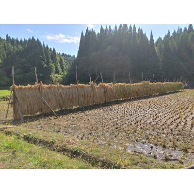 【ふるさと納税】栽培期間中肥料·農薬不使用 玄米10kg(ササニシキまたは陸羽132号)【1104929】