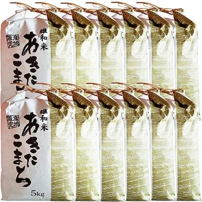 【ふるさと納税】2020年9月発送開始『定期便』秋田市雄和産あきたこまち清流米 5kg全12回【5002237】