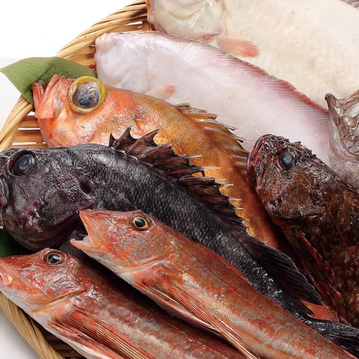 【ふるさと納税】男鹿船川港直送おまかせ旬の地魚セット(大) 【魚介類・地魚】 お届け:~2020年11月下旬頃まで