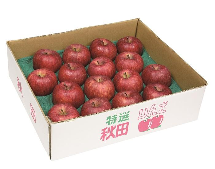 【ふるさと納税】B2602 三関産りんご(ふじ)5kg