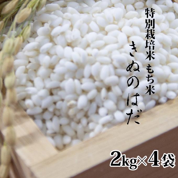 【ふるさと納税】仙北市産 もち米 2kg×4袋(合計:8kg) 【餅・もち】