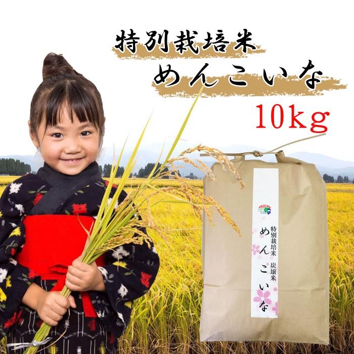 【ふるさと納税】【米どころ秋田の特別栽培米 炭譲米めんこいな】令和元年産 白米 10kg<クレカ限定> 【お米】 お届け:2020年4月上旬頃から順次発送予定。