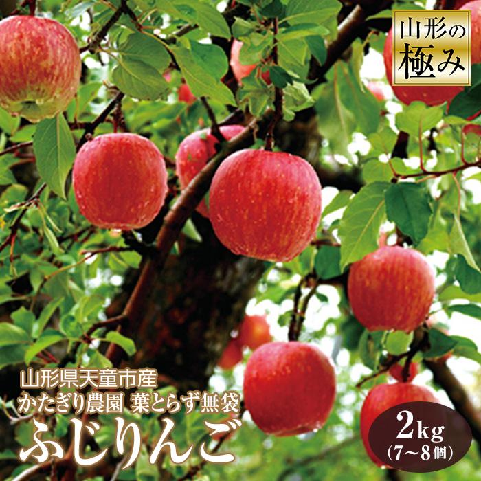 【ふるさと納税】山形の極み 山形県天童市産 かたぎり農園 葉とらず無袋ふじりんご F2Y-0604