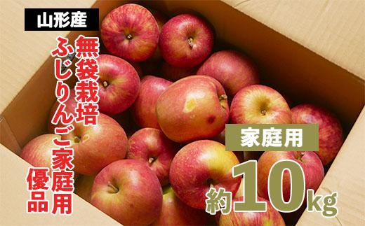 ふるさと納税 FY20-579 家庭用 無袋栽培ふじりんご 売買 本日の目玉 約10kg入り 優品