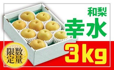 【ふるさと納税】おいしい梨!大玉でみずみずしい品種が返礼品のおすすめは?