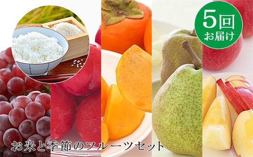 【ふるさと納税】FY19-170 【定期便5回】お米と季節のフルーツセット