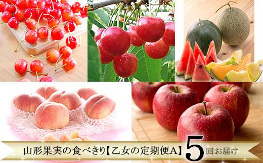 【ふるさと納税】FY19-757 定期便5回 山形果実の食べきり【乙女の定期便A】