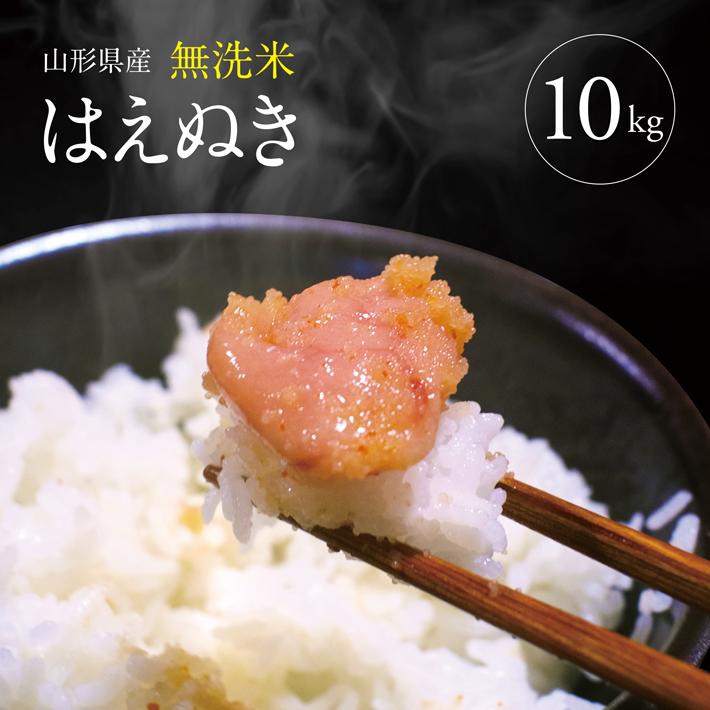 無洗米 はえぬき 5kg×2 10kg 令和元年産米 山形県産