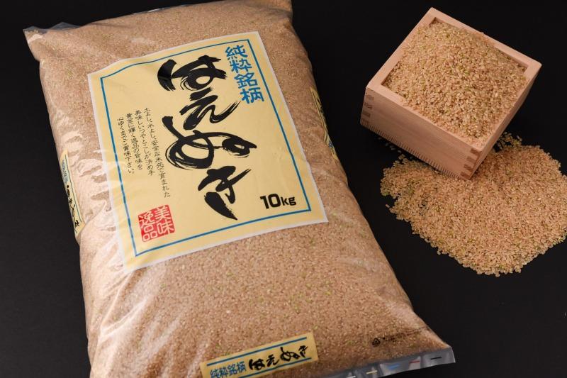 【ふるさと納税】2019年産 新米 10kg 山形県産 「 はえぬき 玄米 」