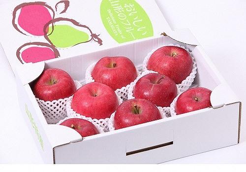 【ふるさと納税】【贈答品クラス】りんご(サンふじ)3kg(7~10玉) 秀品