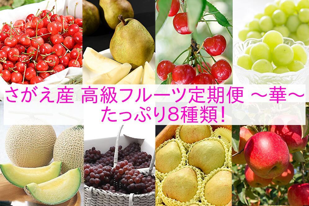 【ふるさと納税】 【果物王国 山形】 贅沢 さがえ 産 高級 フルーツ8回 定期便 ~ 華 ~