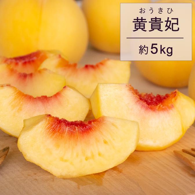 【ふるさと納税】もも 桃 黄貴妃 5kg 特秀 18玉以上 令和二年産 2020年産 果物 送料無料