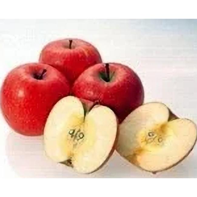 【ふるさと納税】りんご サンふじ 5kg 秀 20玉以上 令和二年産 2020年産 果物 送料無料
