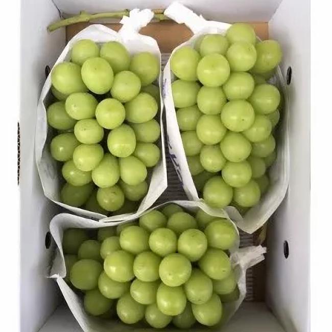 【ふるさと納税】ぶどう ブドウ シャインマスカット 令和二年産 2020年産 約2.5kg 2~4房 果物 送料無料