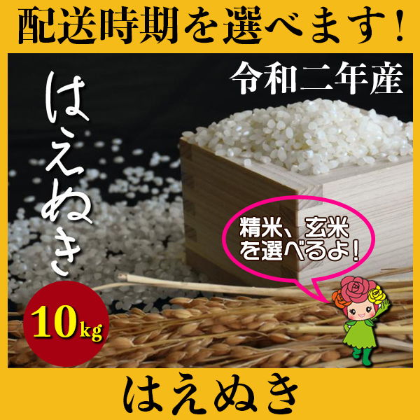 【ふるさと納税】 米 10kg 5kg×2 はえぬき 新米 精米 玄米 令和2年産 2020年産 山形県村山市産 送料無料 先行予約 010-d93