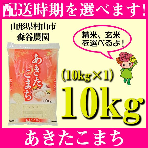 【ふるさと納税】 米 10kg あきたこまち 精米 玄米 令和元年産 山形県村山市産 送料無料